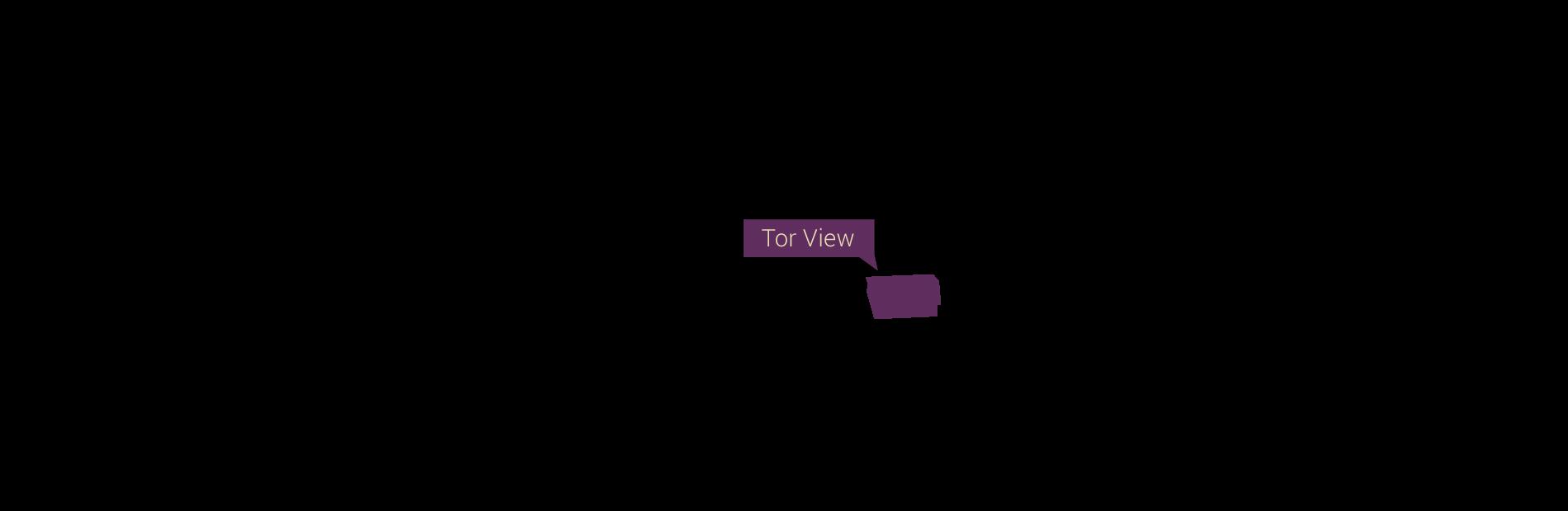 torView