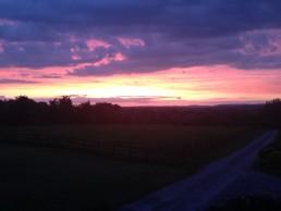 Glastonbury sunsets