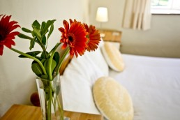 Double accommodation at Vital Detox, middlewick glastonbury somerset orchard view holiday cottage bedroom uai 258x172
