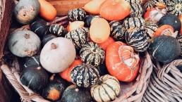 organic vegetables at vital detox